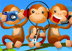 Macacos antenados