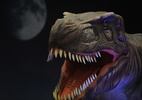 Quando desapareceram os dinossauros? - Divulgação